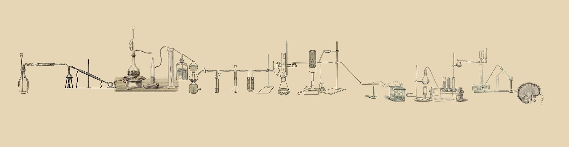 Naši dijaki uspešni na državnem tekmovanju iz kemije